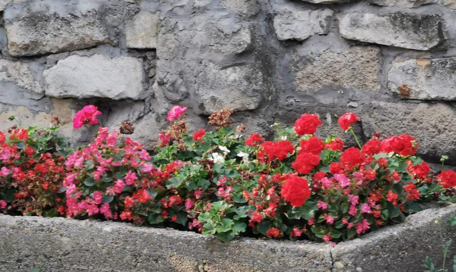 Mágikus Tündérek áldása péntek hajnalra: A bőség áldása